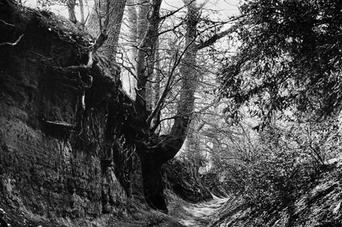 hamish-fulton-north-downs-1971_bewerkt-1
